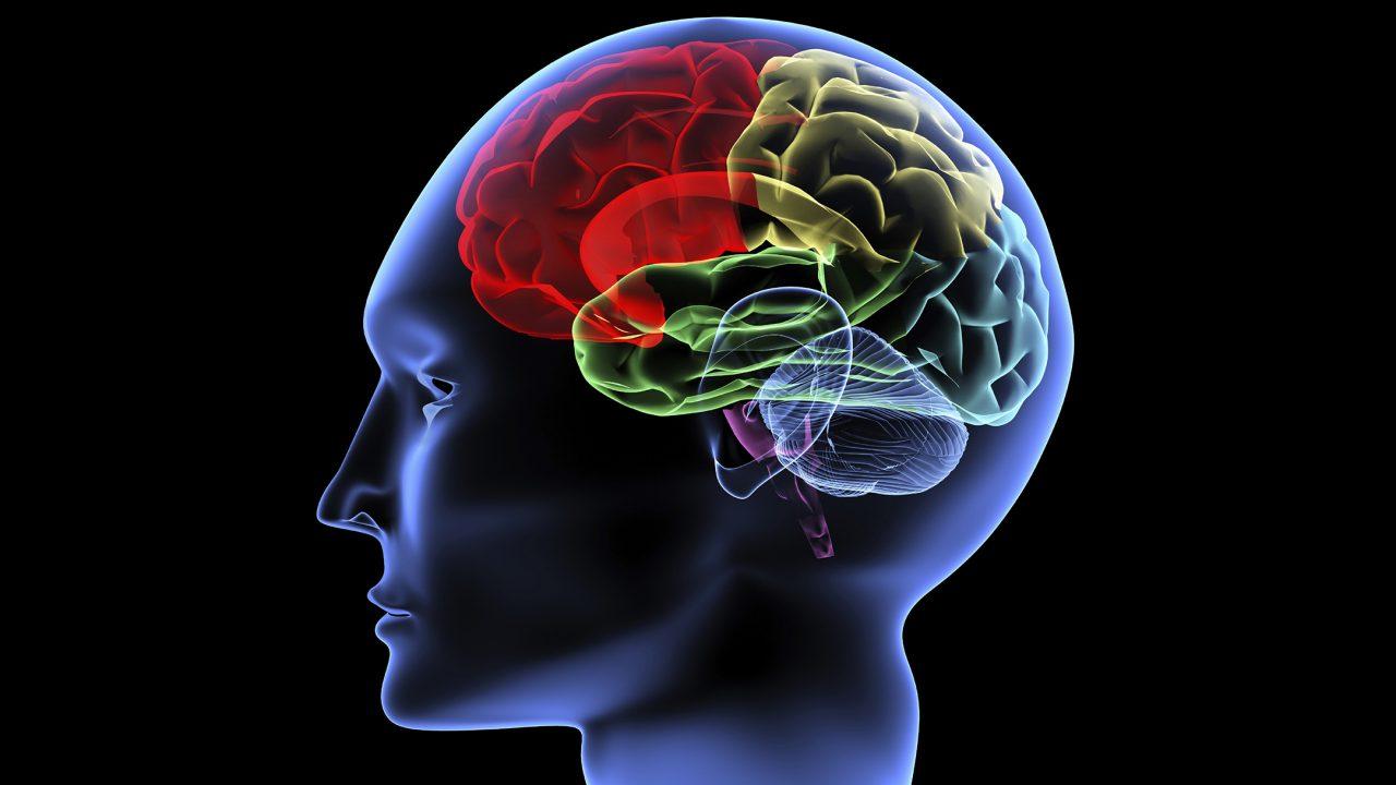 Εγκεφαλικό Επεισόδιο: Η διατροφή που μειώνει κατά 10% τον κίνδυνο