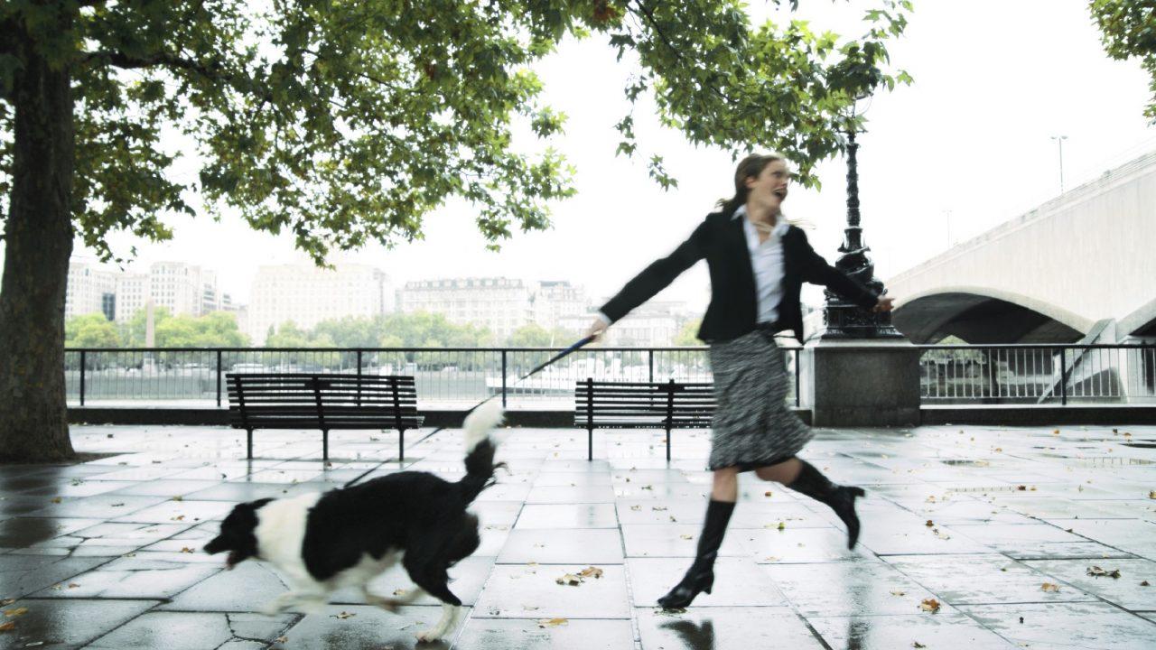 Σας… πάει ο σκύλος βόλτα; Να, τι μπορείτε να κάνετε