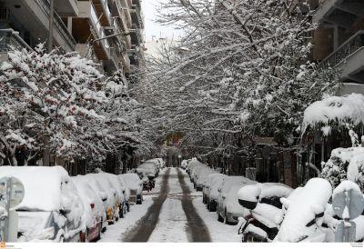 Οδηγός επιβίωσης στο κρύο και το χιόνι