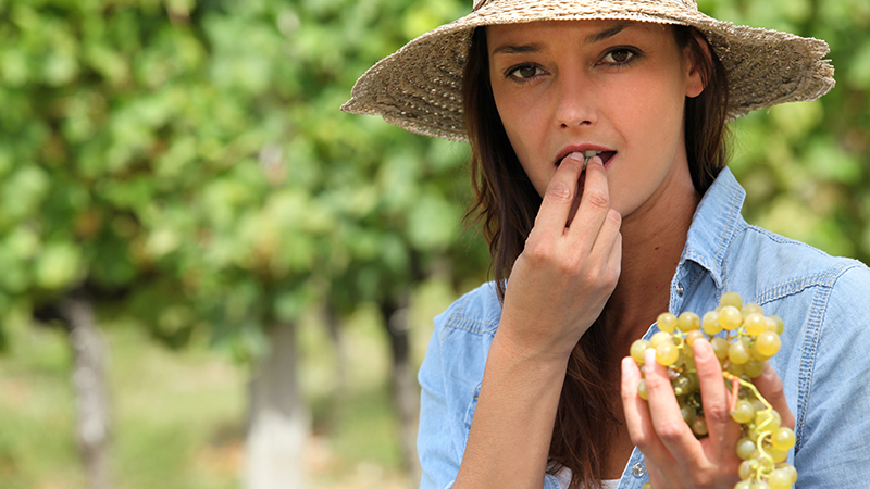 Το μεσογειακό φρούτο που προστατεύει από τον διαβήτη, τη φλεγμονή και την στεφανιαία νόσο