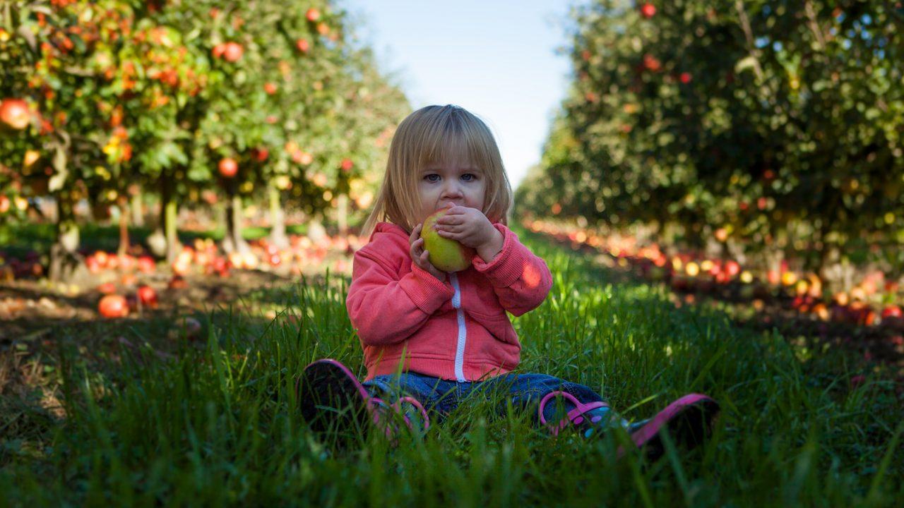 Έξι βήματα για να μάθετε στο παιδί να τρώει σωστά