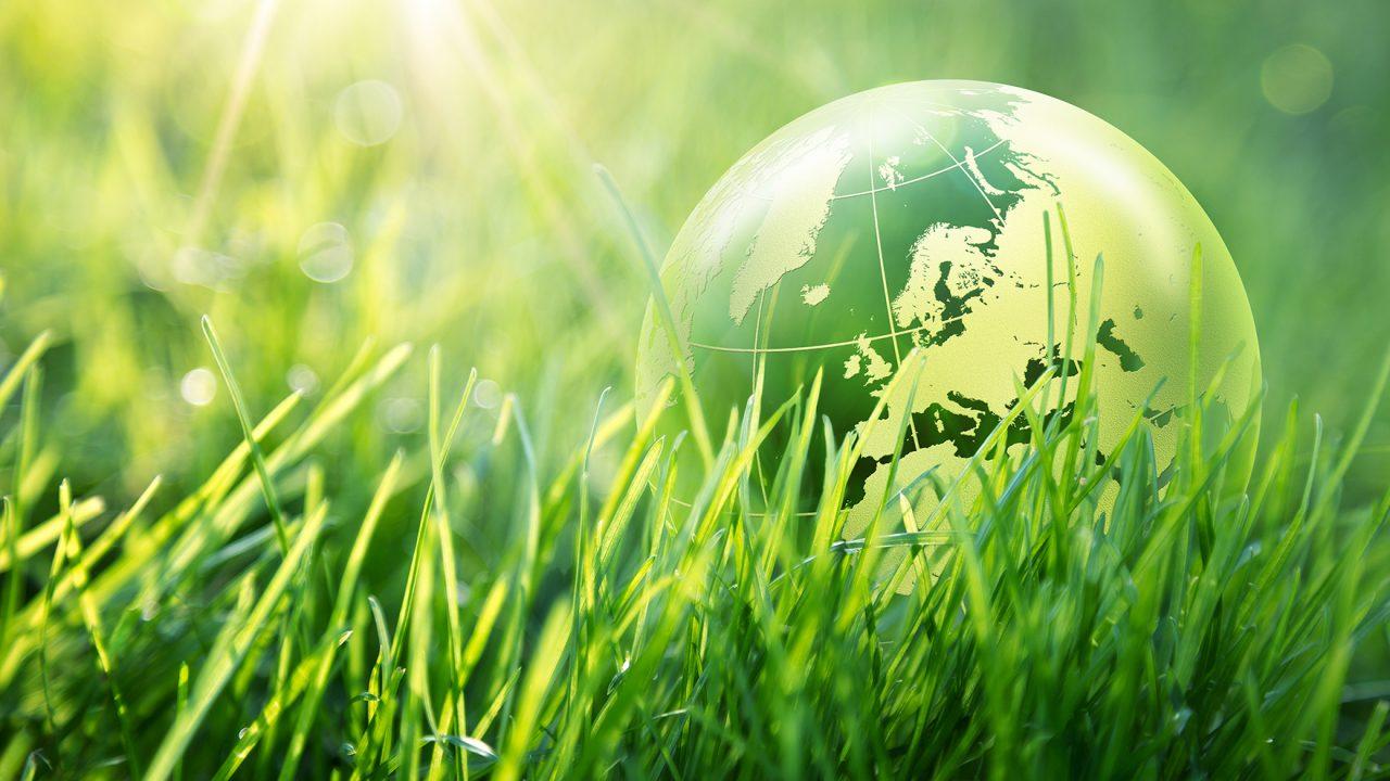 Η COSMOTE αγαπά το περιβάλλον και προστατεύει τη Γη