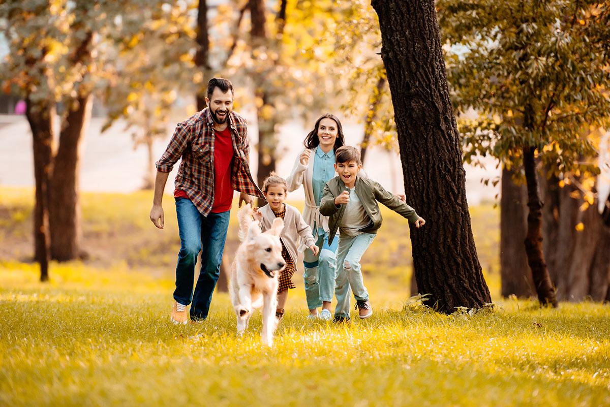 Σκύλος: Πως θα σας συνοδεύει παντού χωρίς προβλήματα