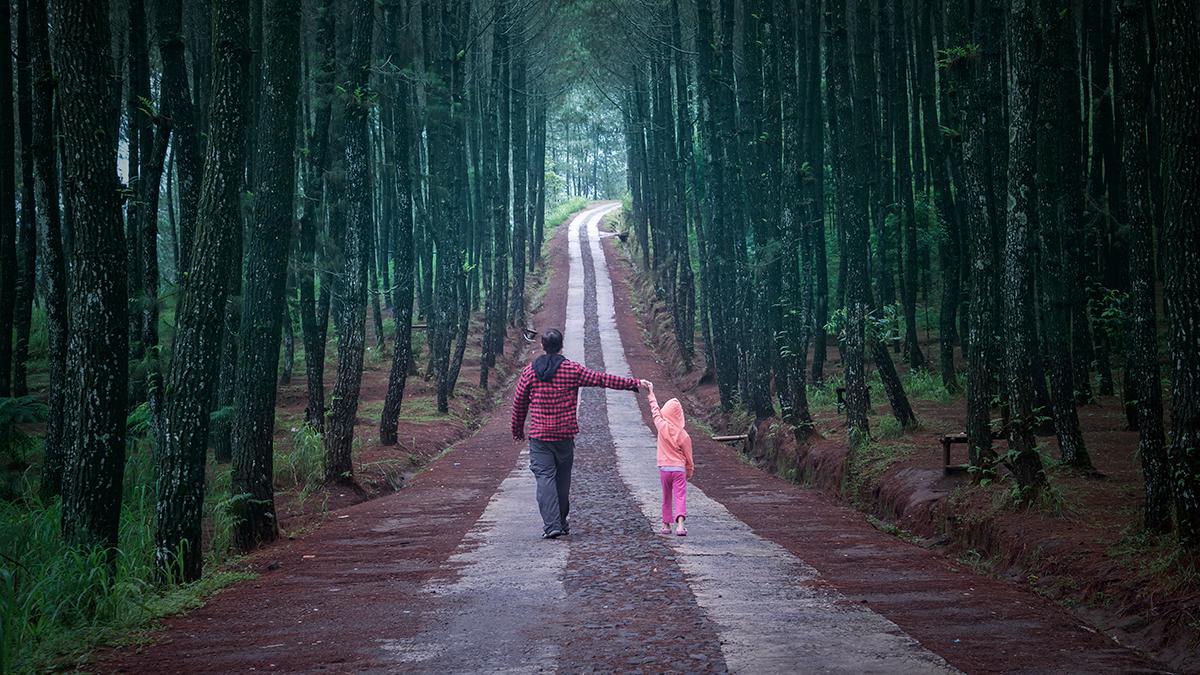 Διαζύγιο σε μικρή ηλικία: Πώς επηρεάζει την ενήλικη ζωή – Η ορμόνη που παίζει ρόλο