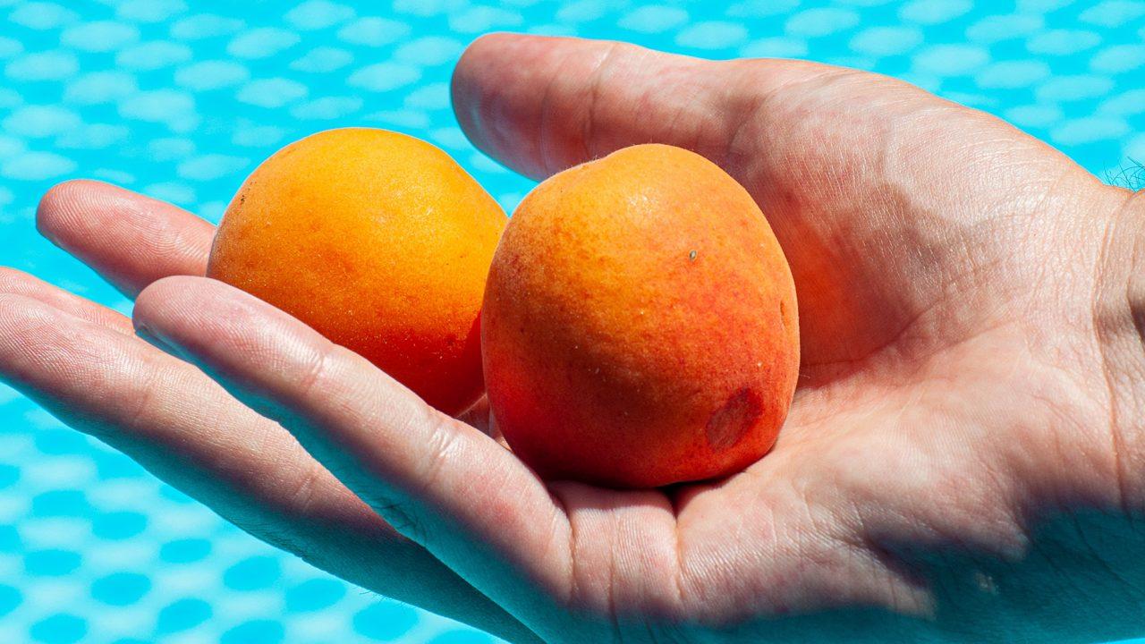 Το αντιοξειδωτικό φρούτο που προστατεύει το ήπαρ