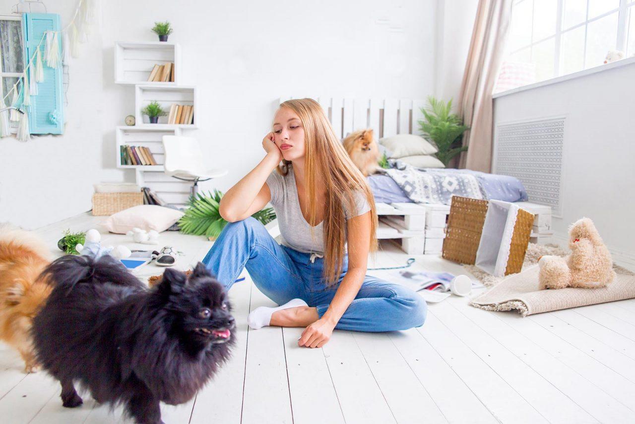 Γιατί ο σκύλος καταστρέφει το σπίτι όταν μένει μόνος του – Πώς αλλάζει η συμπεριφορά του