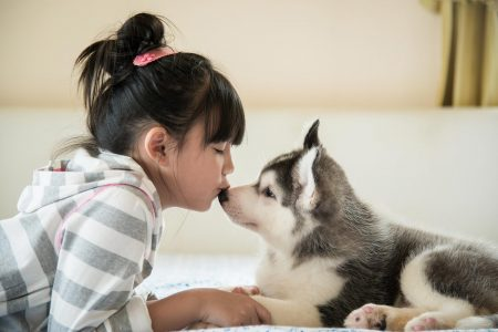 Οκτώ κανόνες για μια αρμονική σχέση ανάμεσα στο παιδί και τον σκύλο