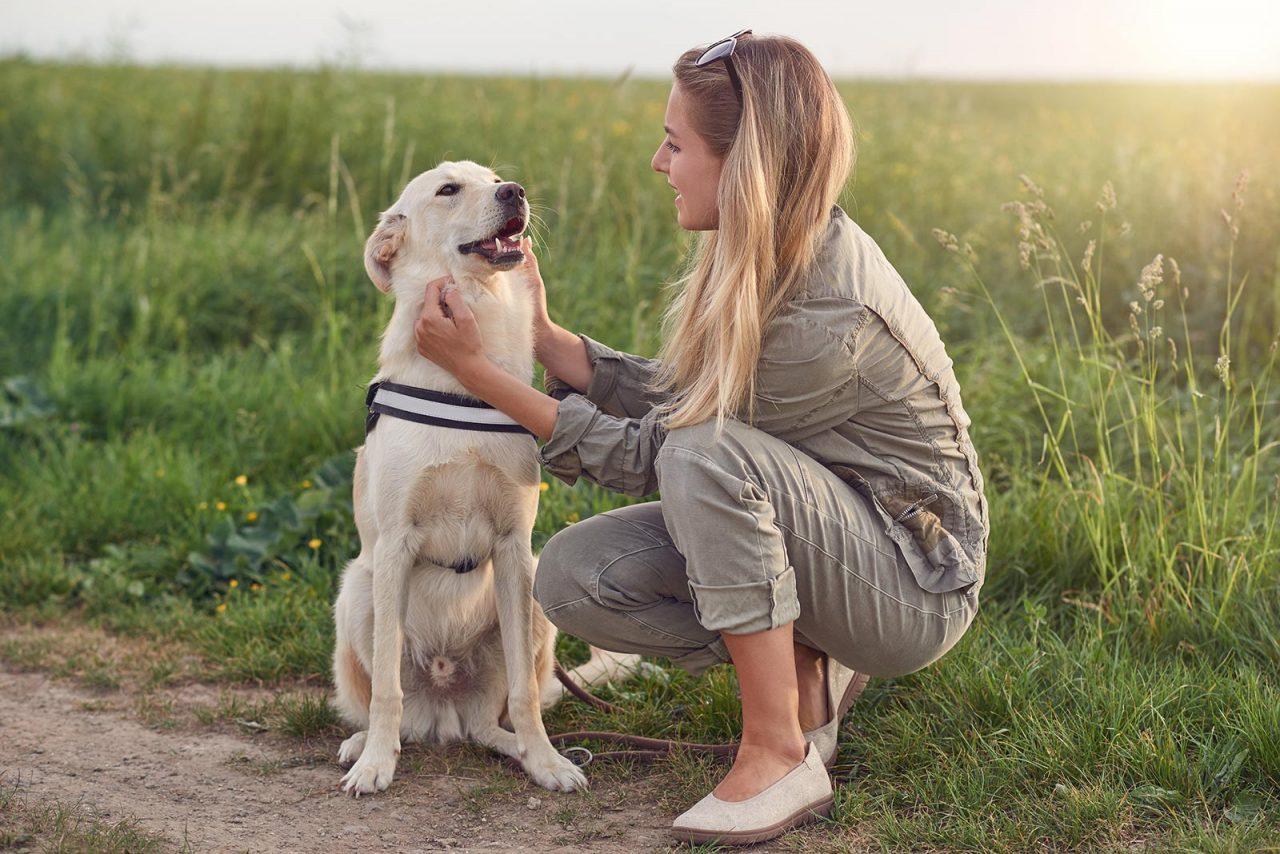 Πέντε τρόποι να κάνετε τον σκύλο σας ευτυχισμένο